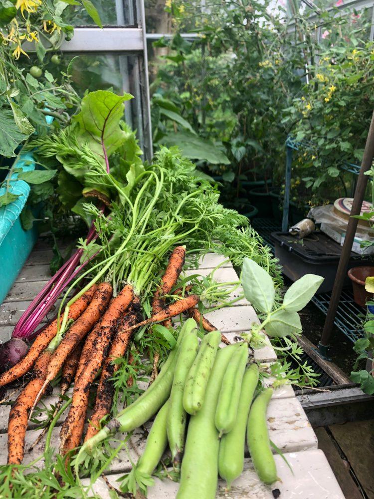 fresh veg by Robin Ree